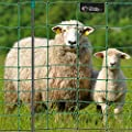 Premium Elektronetz 108cm VOSS.farming farmNET® 50m Schafzaun Ziegennetz 14 Pfähle 2 Spitzen grün von VOSS.farming - Du und dein Garten