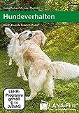 Hundeverhalten nach HundeTeamSchule