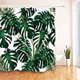 Best Leaf Curtains - Jungle Tropical Palm Leaves,Monstera.Floral Pattern.White,Green Shower Curtain Water Review