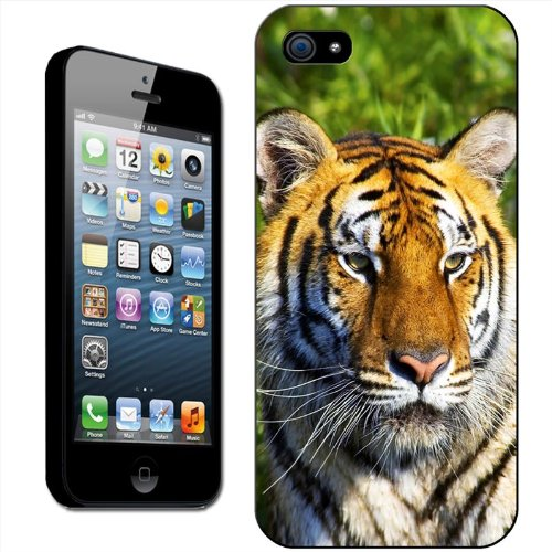 Tigres Coque arrière rigide détachable pour Apple iPhone modèles, plastique, White Tiger Reflecting In Water, iPhone 5C Tiger Face