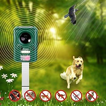 Répulsifs Chat Ultrasons, Volador Solaire Animal Répulsif Animaux Sauvages Protecteur de Jardin, Fréquence Réglable, Effrayer Chien, Chat, Écureuil, Rat, Vole, raton laveur, Fox, Rongeur