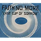 Last Cup Of Sorrow(2remix+ashes To Ashes+pristina)
