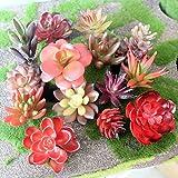 #10: Climberty 5Pcs Different Succulents Artificial Cactus Plants for Office Home Garden Decor (Sent Randomly) (Red)