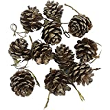 HiFi Collection Christmas Decoration Hanging Pine Cone- Brown - Pack Of 6