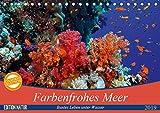 Farbenfrohes Meer (Tischkalender 2019 DIN A5 quer): Buntes Leben unter Wasser (Monatskalender, 14 Seiten ) (CALVENDO Natur)