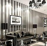 LXPAGTZ Einfache moderne Vlies-Tapete Schlafzimmer Wohnzimmer schwarzen und weißen vertikalen Streifen blau Östliches Mittelmeer Wand Tapete lange 9.5 m * Breite 0,53 m (5 m ²) , 11086