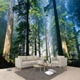Yosot Benutzerdefinierte 3D Wall Murals Tapete Natur Nebel Hoch Aufragenden Bäume Wald Sonnenschein Foto Wall Paper Wohnzimmer Wandbild 3D-140cmx100cm