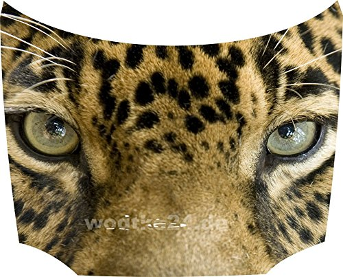 Motorhauben Tattoo Aufkleber Leopard Kopf (Leopard-folie)