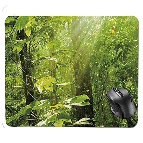 J5E7JYTE Premium-Textured Mouse pad,Forest with Sunray Foliage Leaf Branches Woodland Eco Jungle Misty Picture Mouse Pad Misty Leaf