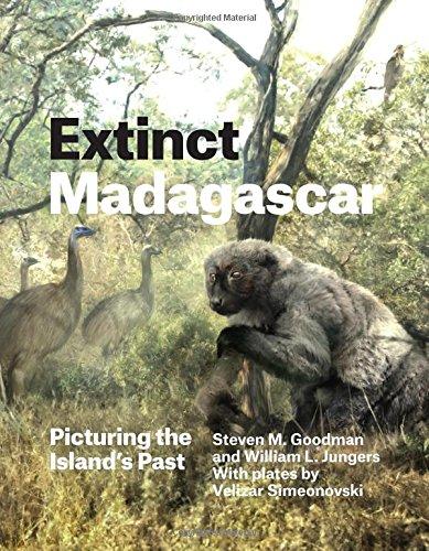 Extinct Madagascar: Picturing the Island's Past por Steven M. Goodman