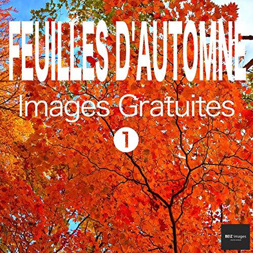 Couverture du livre FEUILLES D'AUTOMNE Images Gratuites 1  BEIZ images - Photos Gratuites