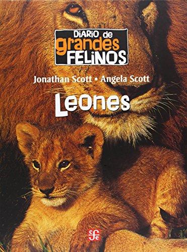 Diario de grandes felinos: Leones