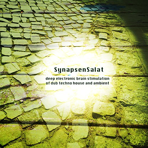SynapsenSalat (Deep Electronic Brain Stimulation of Dub Techno House and Ambient)