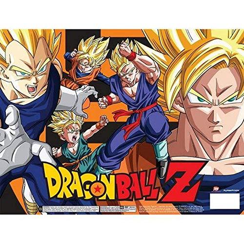 Dragon Ball Z: Anime Series Complete Seasons 1-9 Collector's Box Set
