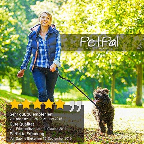 Jogging-Leine – Premium Hundeleine +2 Gratis Abstracts | Laufleine mit 100%-Zufriedenheitsgarantie | Inklusive Zipper-Tasche | Gepolsteter Verstellbarer Neopren-Bauchgurt | Aus Robustem Nylon für Kleine & Große Hunde bis 62 kg | Ideal zum Freihändigen Joggen, Wandern & Spazieren | Elastische Bungee-Leine | Reflektierende Nähte - 2