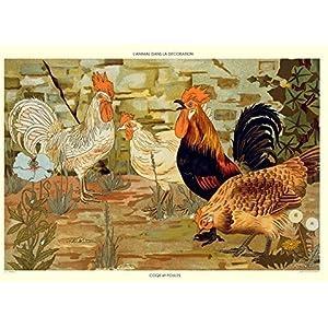 Poster Hähne und Hennen