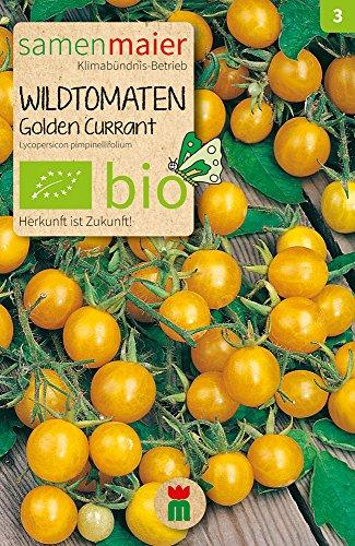 Wildtomaten Golden Currant | Bio-Tomatensamen