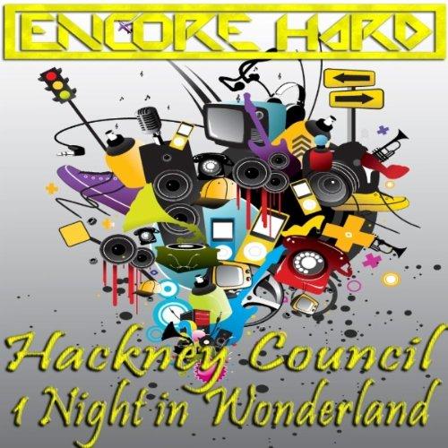 1 Night In Wonderland (Original Mix)