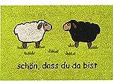 matches21 Fußmatte Fußabstreifer Kokos ,,Schön, dass du da bist' grün 40x60x1,5 cm rutschfest