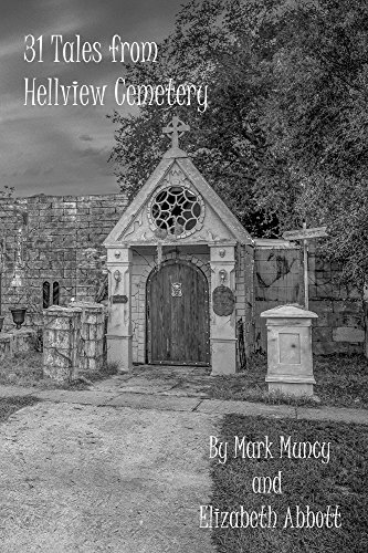 31 Tales from Hellview Cemetery (English Edition)