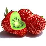 TOYHEART Semillas De Frutas De Primera Calidad, 1 Bolsa Semillas De Fresa De Kiwi Rústicas De Alta Tasa De Germinación Semill