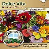 N.L.Chrestensen 53060, Sommerblumenmischung, Dolce Vita, Mehrfarbig