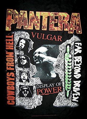 PANTERA FLAGGE FAHNE BEYOND VULGAR COWBOYS (Pantera Flagge)
