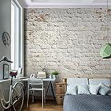 Fototapete Steinwand 352 x 250 cm - Vliestapete - Wandtapete - Vlies Phototapete - Wand - Wandbilder XXL - !!! 100% MADE IN GERMANY !!! Runa Tapete 9020011a