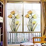 HL - Das Fenster Glas film Papier matt Glas transparent opak Aufkleber Tür fenster Aufkleber Papier Fenster Beschattung Sonnenschutz, Schrubben, Breite 80 * 118 cm