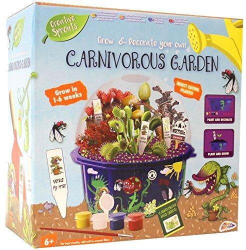 Kinder Wachsen & Dekoriere Dein Eigenes Fleischfressende Venus Fliegenfalle Garten Pflanzen Set (Pflanzen Wachsen)