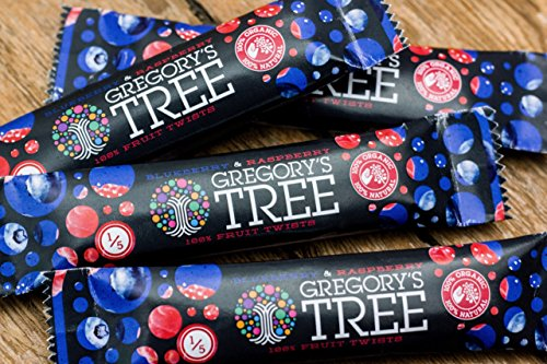 gregorys-tree-blueberry-raspberry-double-twist-18g-x-24
