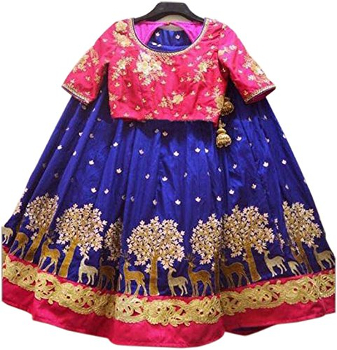 ShreeBalaji Women's Designer Pink And Blue Color Heavy Embroidary Lehenga Choli(Xp_106,FreeSize)