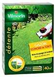 Vilmorin 4472253 Gazon Econome Tonte 1 kg