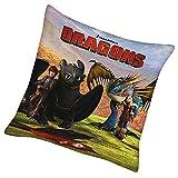 Dragons - Kissen Kinder Kuschelkissen Dekokissen Freunde 40x40cm