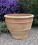 handgefertigter terracotta Topf, Blumenkübel, 50 cm groß frostfest, Keramik für Außen Garten Terrasse Deko, Buxus