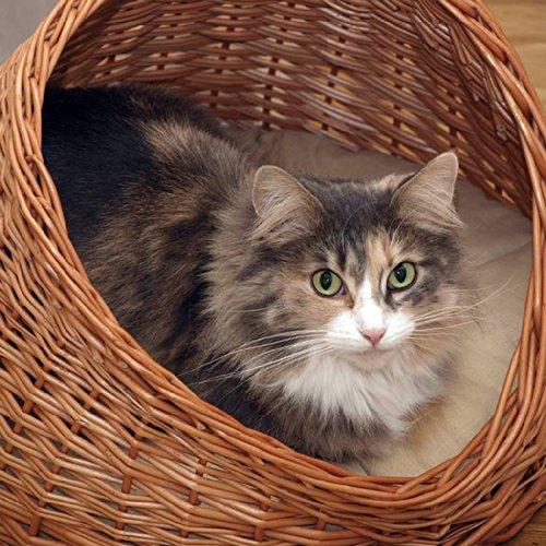 *2-9-18 GalaDis Katzenhöhle Weide mit hellem Kissen / Katzenkorb / Katzenbett, für Katzen*