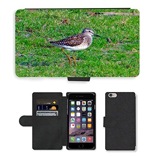 Just Mobile pour Hot Style Téléphone portable étui portefeuille en cuir PU avec fente pour carte//m00140283bois oiseau Sandpiper Bécasseau//Apple iPhone 6Plus 14cm