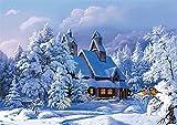 XDXART DIY Ölgemälde Malen Nach Nummer Kit für Kinder Erwachsene Anfänger 16x20 Zoll - Haus im Schnee, Zeichnen mit Pinsel Weihnachtsdekor Dekorationen Geschenke (Rahmen)
