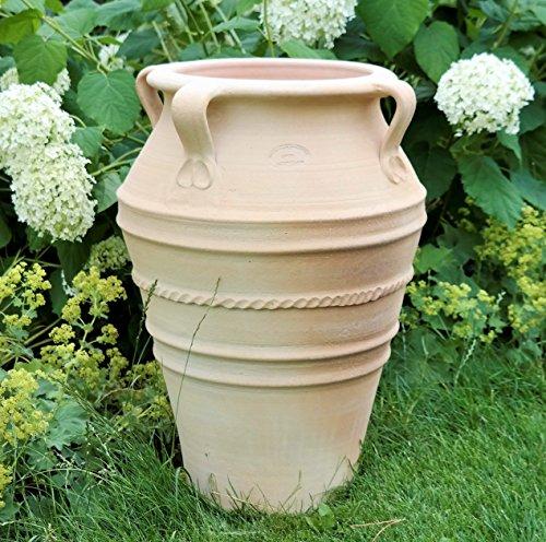 Kreta-Keramik handgefertigte Terracotta Amphore mit Henkel, absolut frostfest, tolles Pflanzgefäß für Innen sowie Garten und Terrasse, Datura 50 cm
