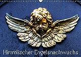 Himmlischer Engelsnachwuchs (Wandkalender 2018 DIN A3 quer): Ein fotografische Huldigung für alle noch jungen Engel, die uns tagtäglich zur Seite ... uns bek´leiten. (Monatskalender, 14 Seiten )