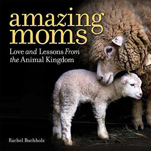 Amazing Moms: Love and Lessons From the Animal Kingdom por Rachel Buchholz