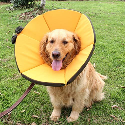 XXDYF Hunde halsbänder Halskrausen Kegel, atmungsaktiver und weicher Rand Gepolstert Elisabethanisch Hunde,Yellow,L