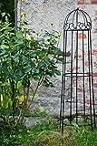 kuheiga Rankgerüst Schwarz Obelisk Rosenhilfe H: 120cm Rankhilfe