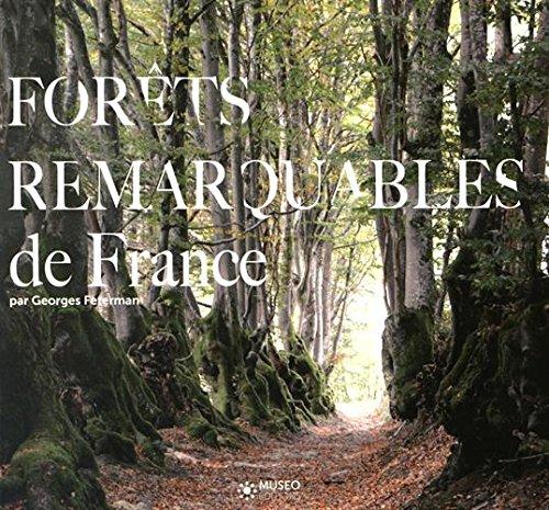 Forts remarquables de France