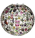 Unbekannt Papier Laterne / Lampenschirm - Eulen & Blumen - für Kinder Papierlaterne - Laternen Lampions - Eule auf AST - Mädchen Jungen - Kinderzimmer Tier Schmetterling Vögel