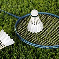 Weitere Ballsportarten Badminton 5Pcs Game Sport Training White Duck Feather Shuttlecocks Birdies Badminton FL