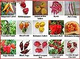 Chili Sortiment 15 sehr scharfe Sorten für Hobbygärtner, die scharfe Küche lieben. Samen Saatgut -