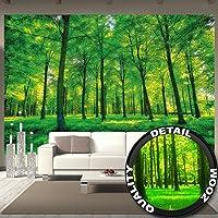 Foto mural Arboles – decoración pura naturalesa paisaje bosque calvero verano relajación sol plantas Flora forstal helechos-ramaI I foto-mural foto póster deco pared by GREAT ART (336 x 238 cm)