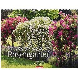 Im duftenden Rosengarten - Kalender 2019