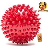 Foodie Puppies Rubber Stud Spike Hard Ball for Medium to Large Dogs & Pets (Medium) - Color May Vary